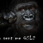 Где, бхххЬ, моя QSL-ка ?!!! Забыл отправить? ДА?!!!