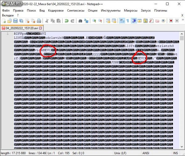 AVI файл в формате HEVC (H.265) и с заменённым заголовком в HEVC